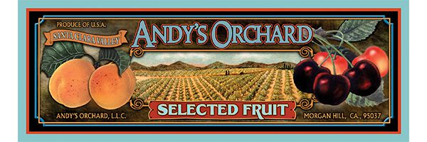 Andy's Orchard logo