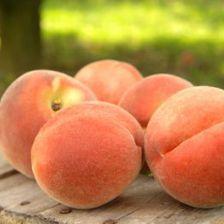 Fralinger Orchards