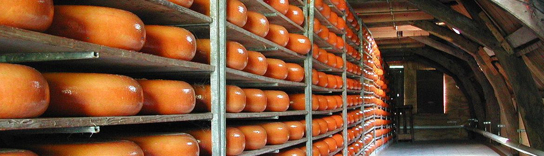 Beemster Premium Dutch Cheese