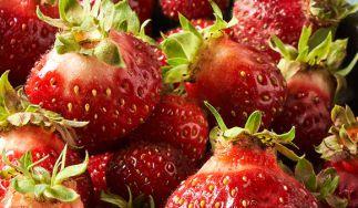 Mountain Sweet Berry Farm