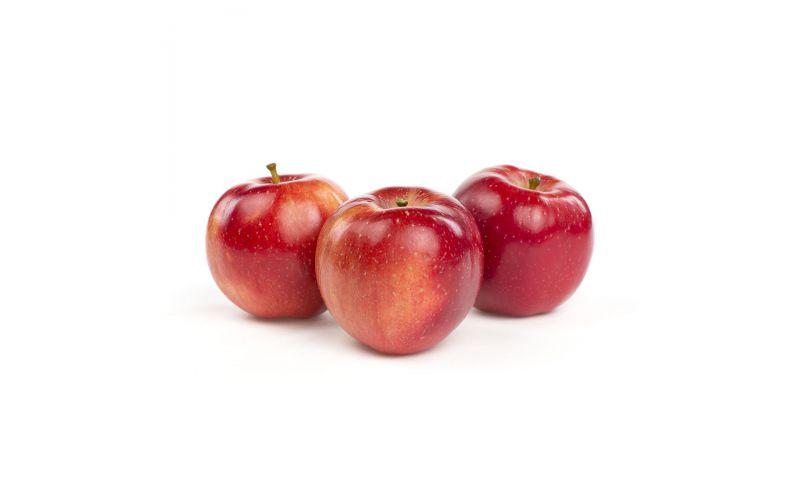Esopus Spitzenburg Apples
