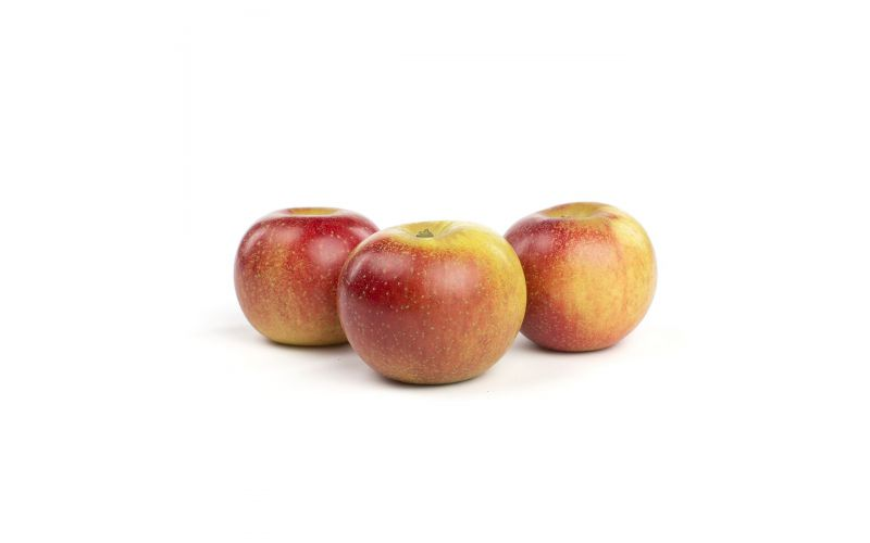 Black Reinette Heirloom Apples
