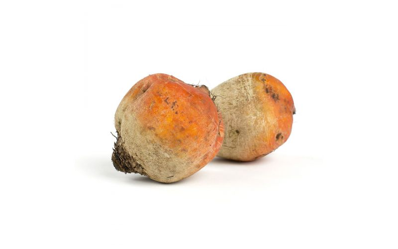 Large Golden Beets