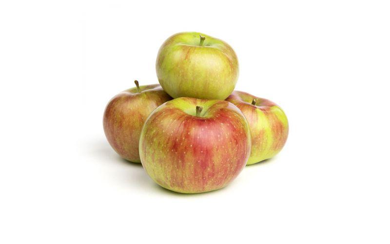 Rambour Franc Apples