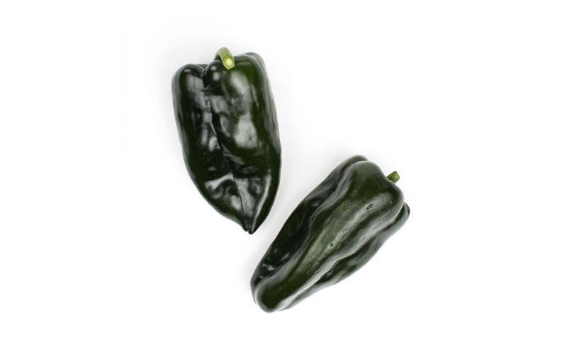 Master Poblano/Passilla Peppers