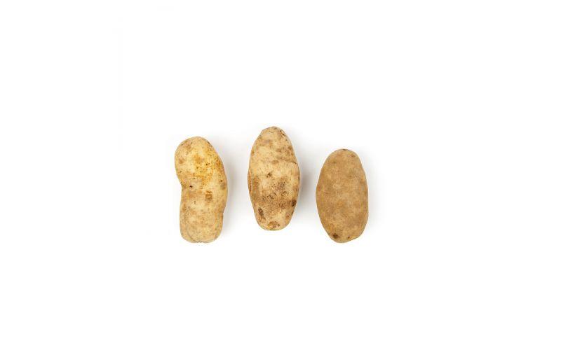 GPOD Potatoes 100 CT