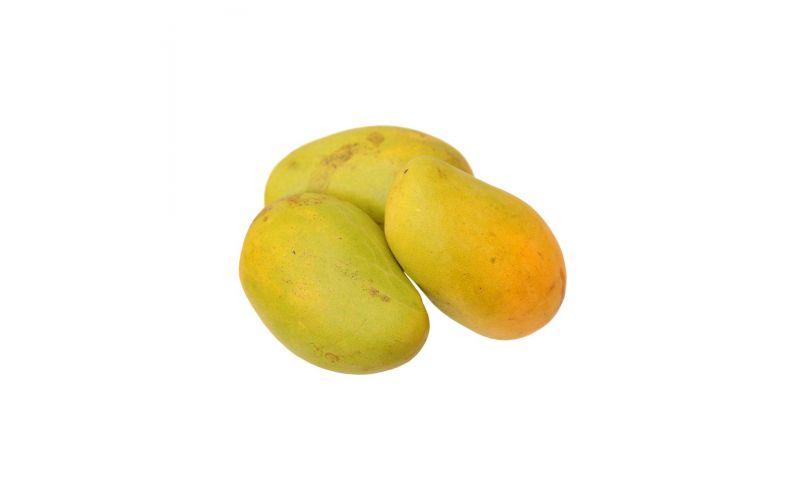 Honey Ataulfo Mangoes