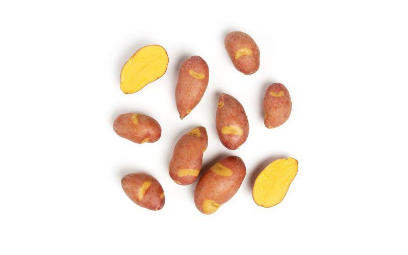 Magic Myrna Alaskan Fingerling Potato