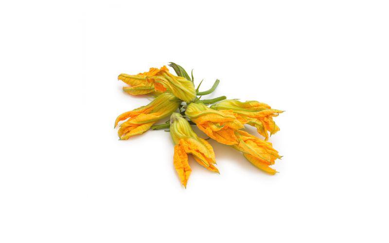 Organic Zucchini Flowers