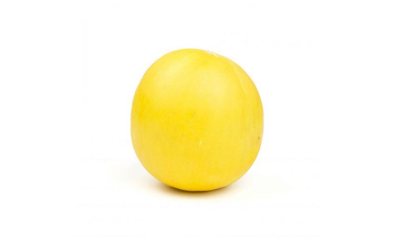 Golden Honeydew Melons
