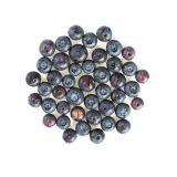 Frozen Organic Blueberries