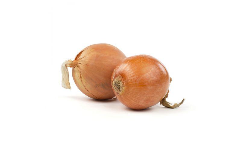 Super Colossal Spanish Onions