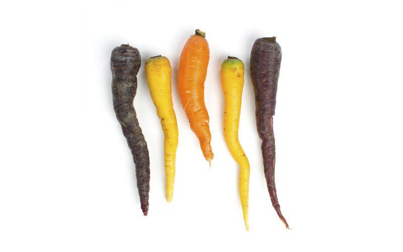 Organic Heirloom Carrot Mix