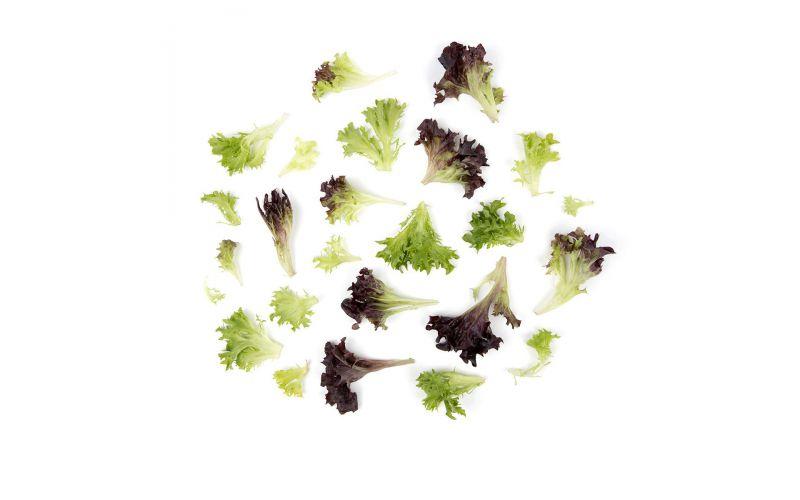 Organic Arcadian Harvest Mix