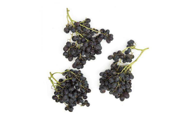 Gum Drop Grapes