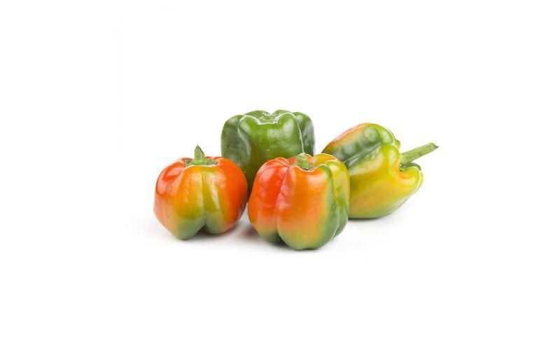 Sun Tan Peppers