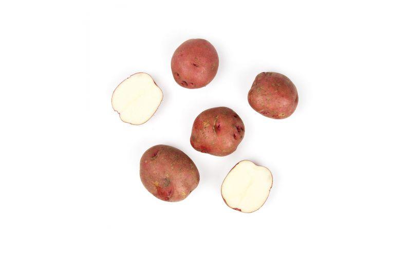 Organic Red Potatoes