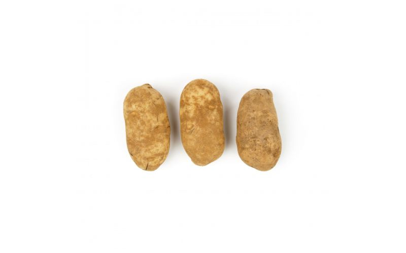 Russets #2 Bakers Potatoes