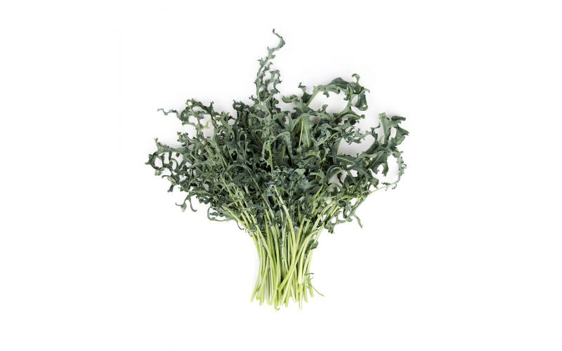 Organic Spigarello Kale