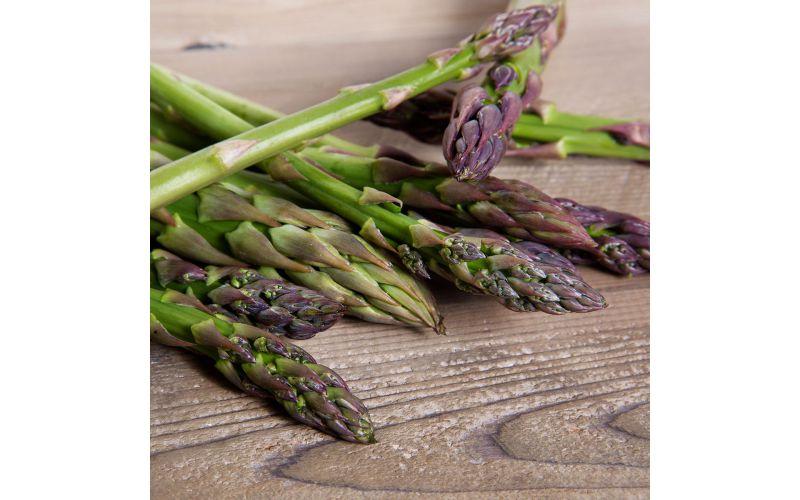 Standard Asparagus