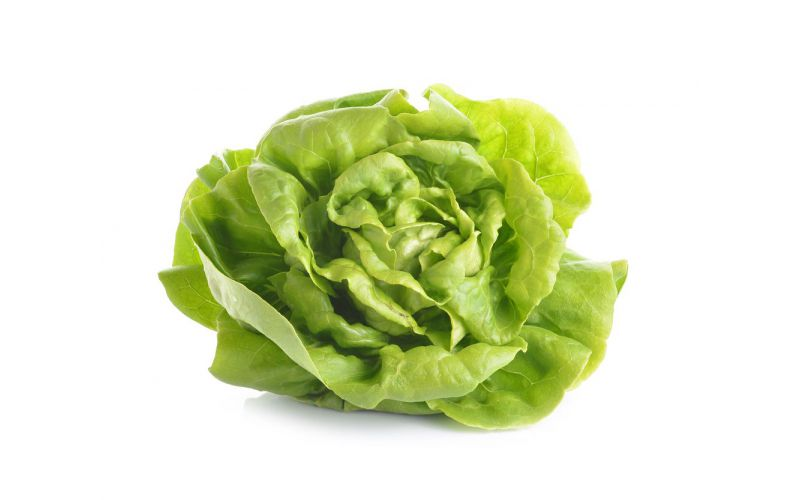 Organic Green Butter Lettuce