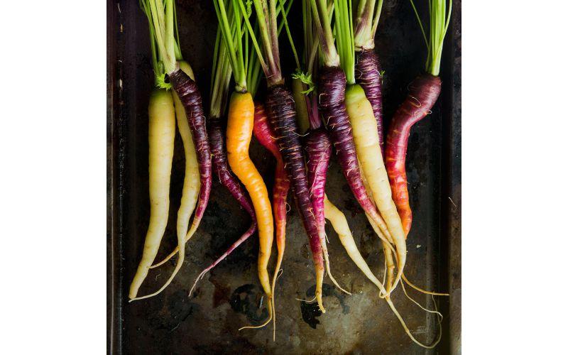 Organic Rainbow Carrot