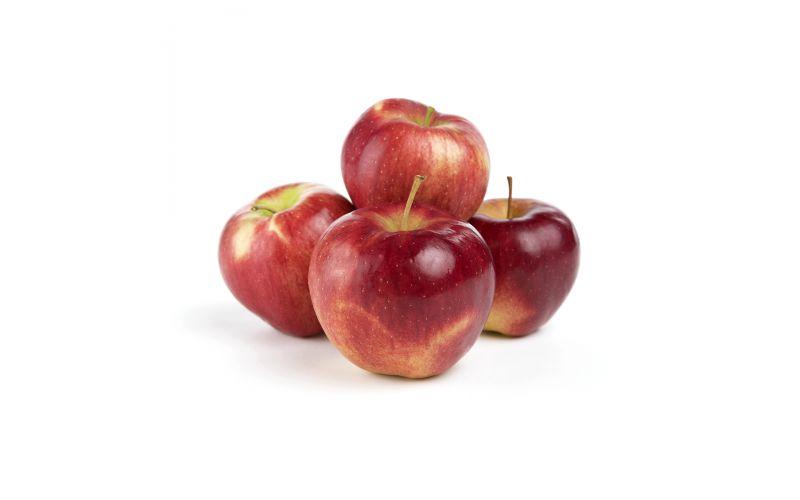Lady Gala Apples