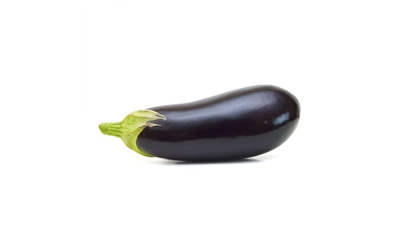 Holland Eggplant
