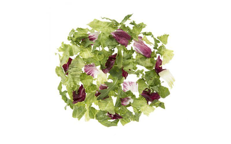 Premium Special Blend Salad Mix
