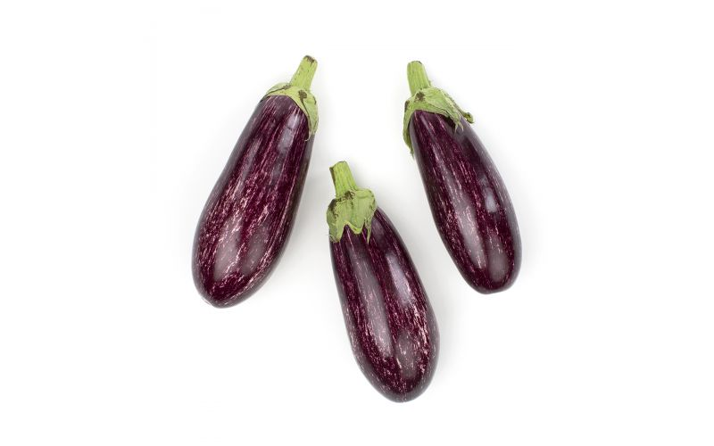 Organic Graffiti Eggplant
