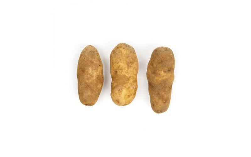 White Envol Frying Potatoes