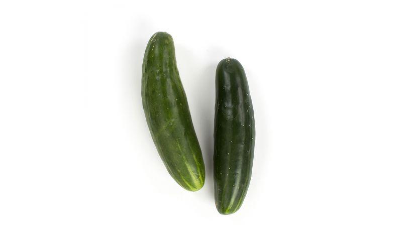 Super Select Slicing Cucumbers