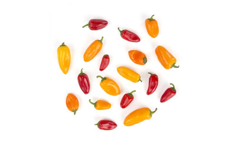 Organic Sweet Pepper Medley