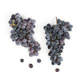Organic Thomcord Grapes