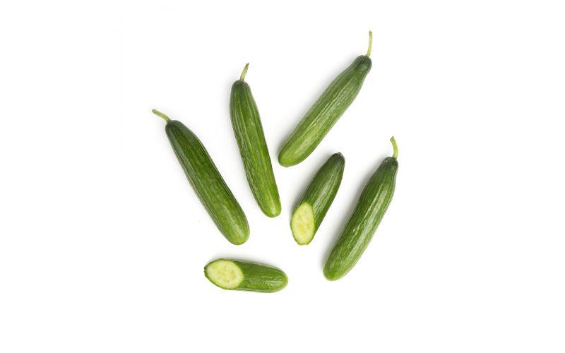 Organic Persian Cucumbers