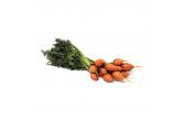 Organic Thumbelina Carrots