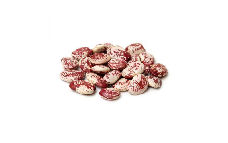 Organic Christmas Lima Beans
