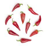 Organic Espelette Peppers