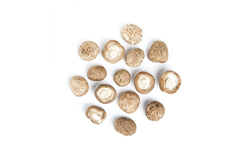 Oakwood Shiitake Mushrooms