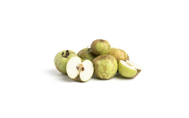 Knobbed Russet Apples