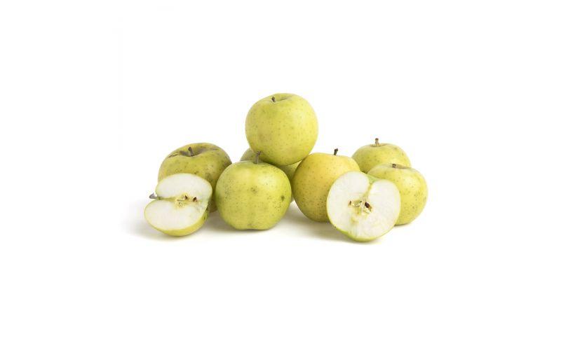 Ananas Reinette Heirloom Apples