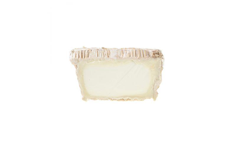 Mitica® Leonora Cheese