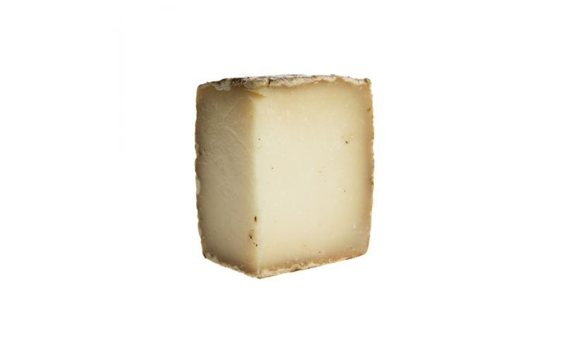 Tomme Brulee Cheese