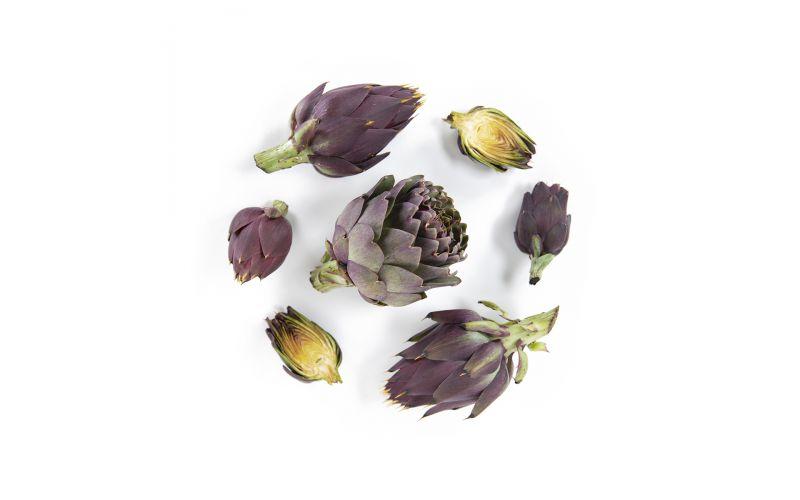 Organic Violetta Artichokes