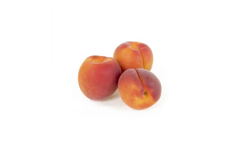 Sunset Apricots