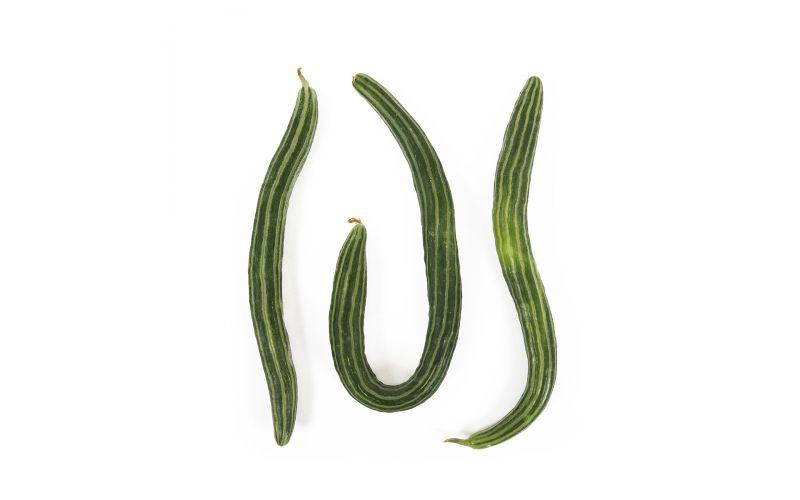 Striped Armenian Cucumbers