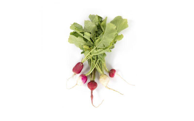 Organic Spring Mixed Radish