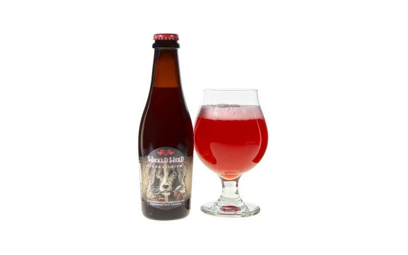 Chien Cherry Farmhouse Ale