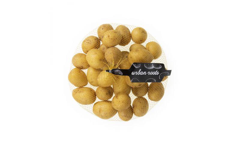 Gold Peewee Potatoes