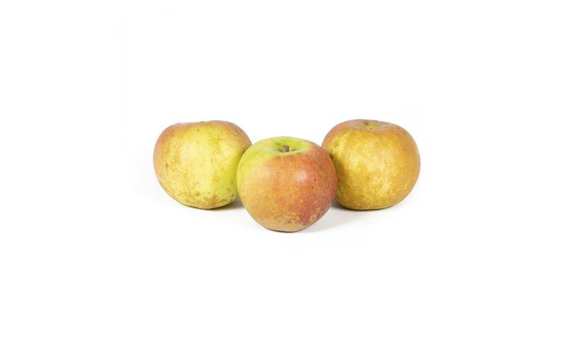 D'arcy Spice Apple
